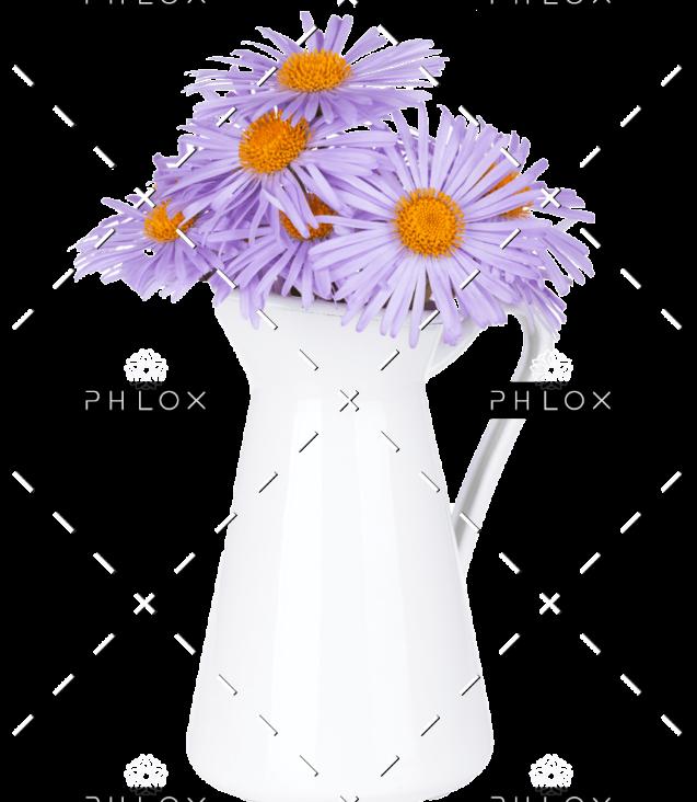 demo-attachment-146-blue-camomile-flowers-in-jug-P6Z6KCB