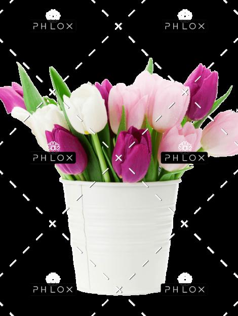 demo-attachment-167-colorful-tulips-bouquet-NFESY4P-copy-1